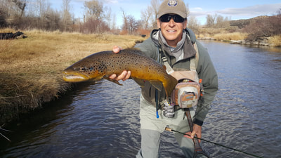 mayfly fly fishing guides park city