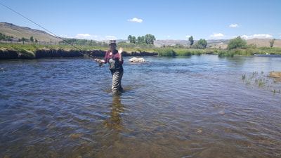 park city fly fishing guide