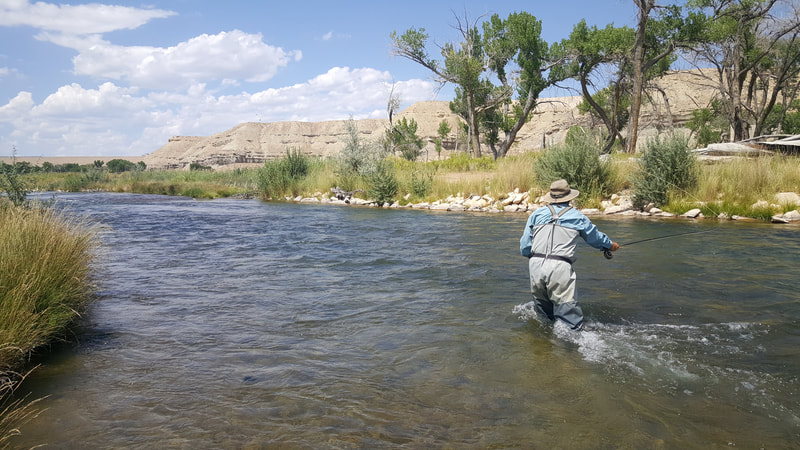 utah desert fly fishing