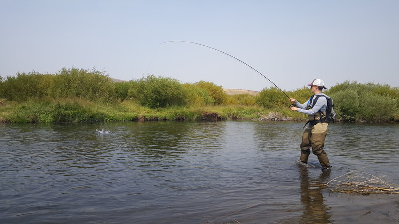 wyoming dry fly fishing