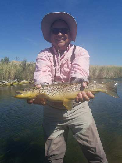 strawberry river fly fishing guides