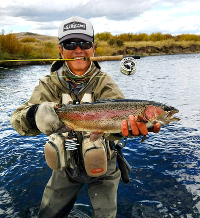 hams fork rainbow trout wyoming