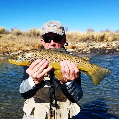 strawberry river utah fly fishing