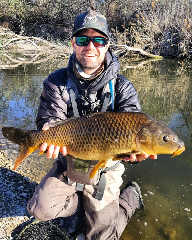 Utah carp fly fishing