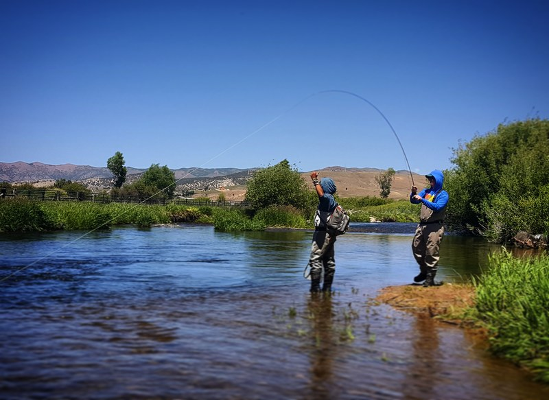 weber river fly fishing guides